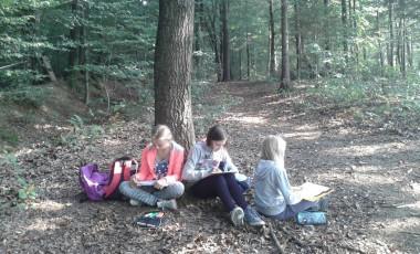 Ustvarjali smo v gozdu