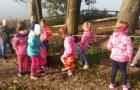 Drugošolci so obiskali gozd